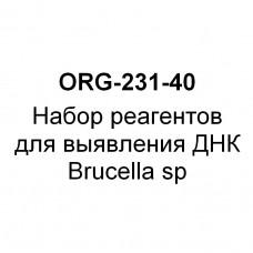 Набор реагентов для выявления ДНК Brucella sp (набор на 40 реакций)